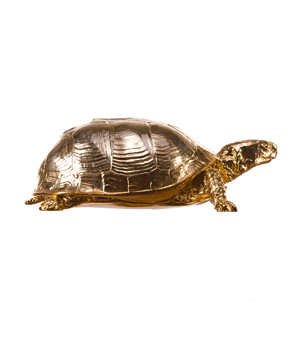 AREAWARE Reality Turtle Box - Gold