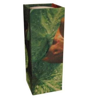 GILLES CAFFIER Polyester Cubic Vase - Large Leaves