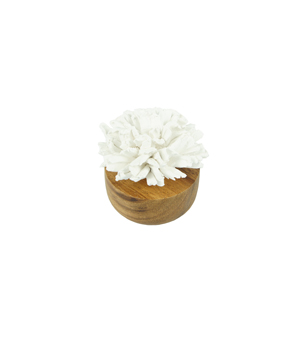 KIDDEE TAMDEE Ceramic Flower Refreshment - Carnation