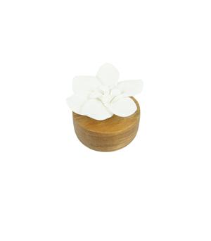 KIDDEE TAMDEE Ceramic Flower Refreshment - Jasmine