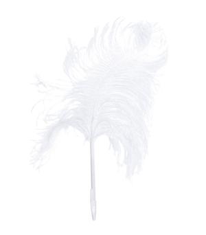 MAISON MARTIN MARGIELA LINE 13 - Feather Pen Ostrich White