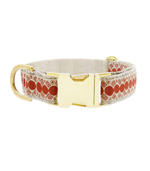 "SEE SCOUT SLEEP Collar 1"" - You're a Stud Cream Rust"